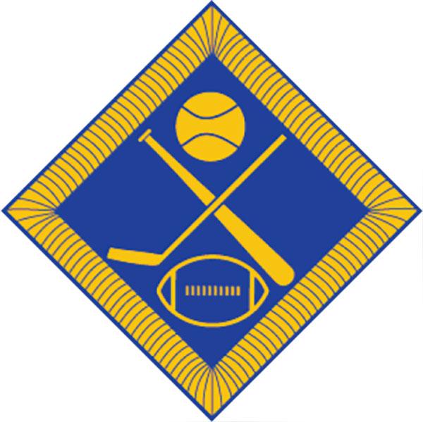 badge-team-sports